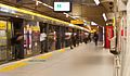 São Paulo Subway - A yellow session. people hurry.jpg