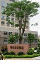 SZ 深圳 Shenzhen 寶安 Bao'An 文衛路 Wenwai Road 畔山美地嘉園 residential building front tree July 2017 IX1 name sign.jpg