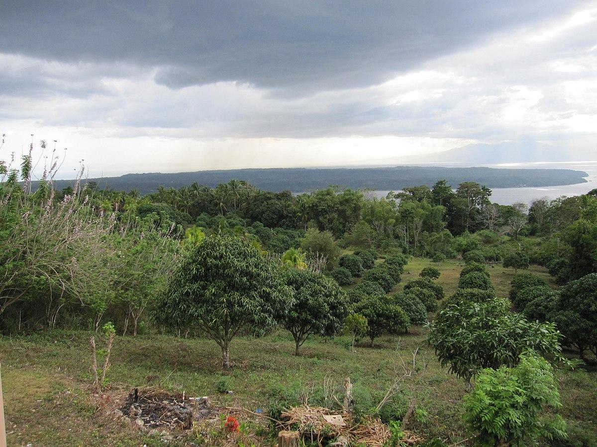 Kaputian Island Garden City Of Samal Davao Del Norte