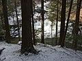 Salt Springs State Park (3283874307).jpg