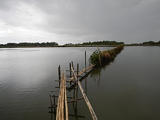 Samal, Bataan - Bamboo structures of the ponds