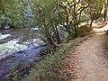 San Lorenzo and River trail.jpg