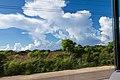 San Pedro de Macorís Province, Dominican Republic - panoramio (2).jpg