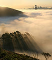 San francisco in fog with rays 1.jpg
