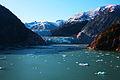 Sawyer Glacier (3729168201).jpg