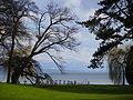 Schloss Tutzing, Blick zum See (2).jpg