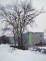 Sergach. Old poplar trees near Town Sixth Secondary School.jpg