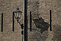 Shadow (12618045134).jpg