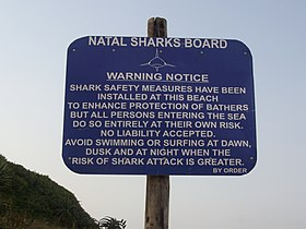Shark warning - Salt Rock South Africa.jpg