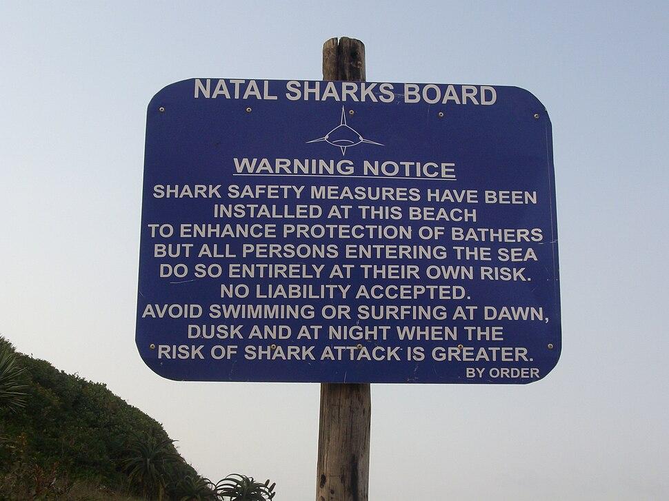 Shark warning - Salt Rock South Africa
