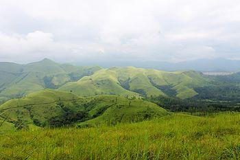Shola grassland in Kudremukh National Park.jpg