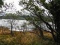 Shore, Inishtemple Island - geograph.org.uk - 2133335.jpg