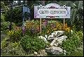 Singapore Sentosa Flower Garden-03 (23805718530).jpg