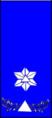 Sivilforsvaret-Distinksjon-Sivilforsvarsadjutant1.png