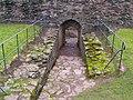 Skenfrith Castle - geograph.org.uk - 1491106.jpg