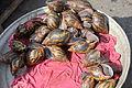 Snails, Makola Market, Accra, Ghana.JPG