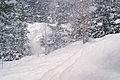 Snowing & blowing (5458326692).jpg