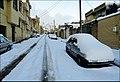 Snowy Day یک روز برفی 7.12.1390 - panoramio.jpg