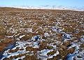 Snowy moorland - geograph.org.uk - 333845.jpg