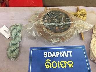 Sapindus - Soapnut is used with natural dyes to color the yarn of Tasar silk.
