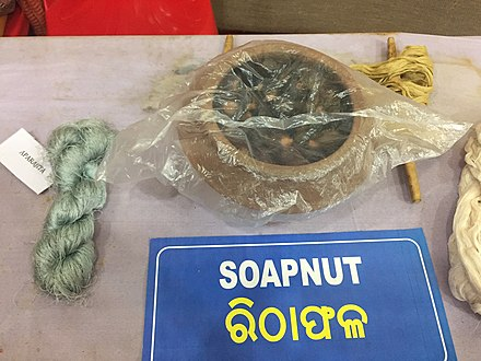 Soapnut is used with natural dyes to color the yarn of Tasar silk. Soapnut as a natural dye.jpg