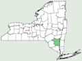 Solidago erecta NY-dist-map.png
