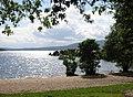 South Bay, Inchcailloch, Loch Lomond - geograph.org.uk - 86027.jpg