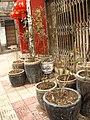 Specail Flower Pots - panoramio.jpg