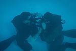 Special Forces Soldiers conduct scuba recertification 150120-A-KJ310-006.jpg