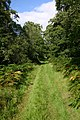 Speyside Way near Aberlour - geograph.org.uk - 539008.jpg
