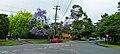 Springdale Road and Stanhope Road, Killara, New South Wales (2010-12-04).jpg