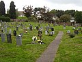 St Luke's Churchyard - geograph.org.uk - 1520796.jpg