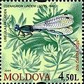 Stamps of Moldova, 022-09.jpg