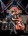 Stanley Clarke at Steinegg Live Festival .jpg