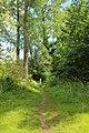 Steenbergse bossen 13.jpg