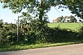 Stile over the wall - geograph.org.uk - 964586.jpg