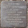 Stolperstein Arnstadt Mispelgütchen 3-Walter Hirschmann.JPG