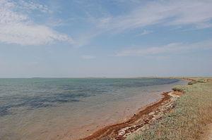 Strilkove - Image: Strilkove Syvash Beach
