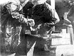 Stripping red salmon at the Alaska Packers Association Fortmann Hatchery, near Loring, Alaska, September 11, 1908 (COBB 159).jpeg