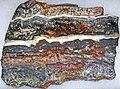 Stromatolite (Dresser Formation, Paleoarchean, 3.48 Ga; Normay Mine, North Pole Dome, Pilbara Craton, Western Australia) 1 (32857204117).jpg
