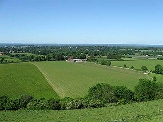 Sullington Warren