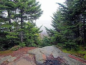 Summit of Cornell Mountain, Shandaken, NY.jpg