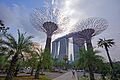 Supertree Grove, Gardens by the Bay, Singapore - 20120617-02.jpg