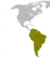 SurAmericas.png