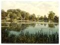 Swanbourne Lake, Arundel Castle, England-LCCN2002696359.tif
