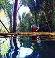 Swimming pool- Biyo Kulule.jpg