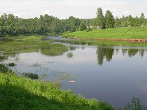 Syas River - Syas River in Leningrad Oblast.
