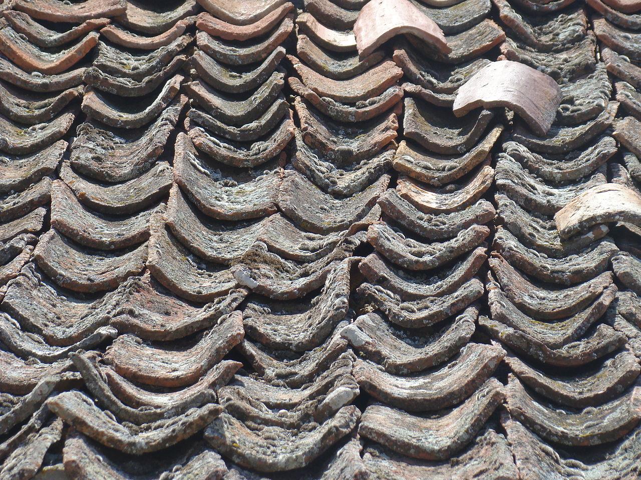 Tejados segovianos o tejados a la segoviana diversos for Clases de tejas y precios