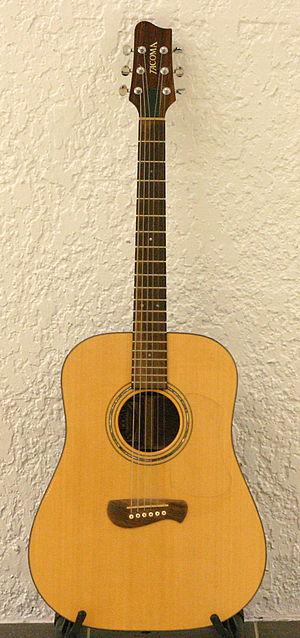 Tacoma Guitars - A Tacoma guitar.
