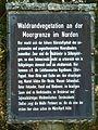 Tafel Hinterzartener Moor 1130083 Waldrandvegetation.jpg